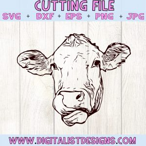 Cow Face SVG cut file! This would be amazing for a variety of DIY Farm Animal craft projects such as: HTV T-shirts, mugs, home decor, scrapbooking, stickers, planners, and more! Cricut Design Space and Silhouette Studio compatible. Vector clip art printable.