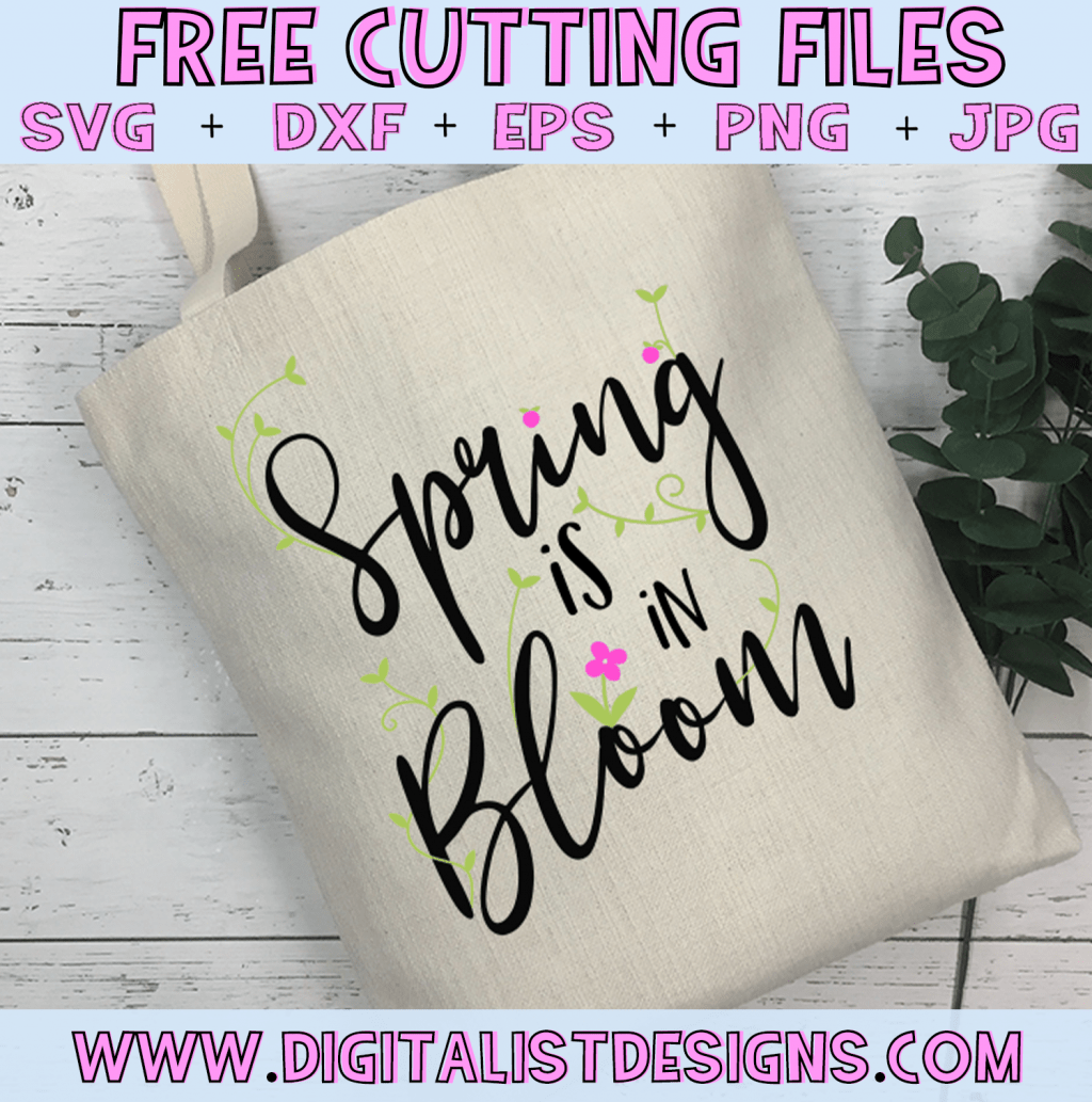 Free Spring is in Bloom SVG cut file! This would be amazing for a variety of Spring DIY craft projects such as: HTV T-shirts, mugs, home decor, scrapbooking, stickers, planners, and more! Cricut Design Space and Silhouette Studio compatible. Free vector clip art printable.